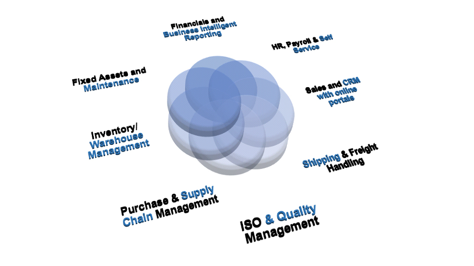 Erp system for trading company